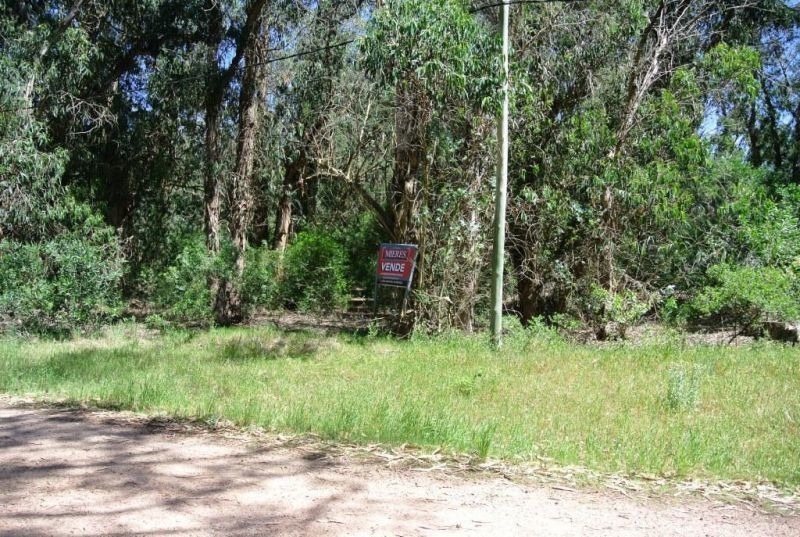 lote | formentor