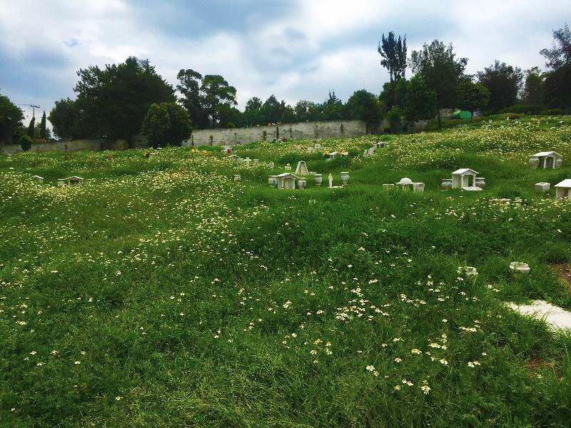 lote funerario (sin usar) en jardines del recuerdo