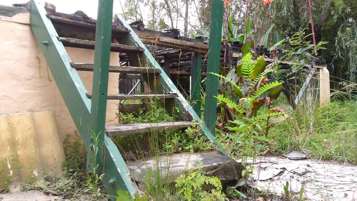 lote interno en isla de tigre. de 20 m. x 160 mt.