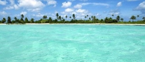 lote isla blanca