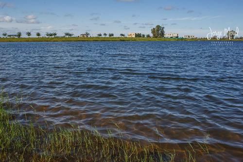 lote laguna - san matias - area 1