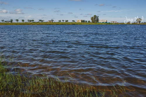 lote laguna - san matias - area 5