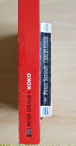 lote libros peter straub - koko - casas sin puertas - envíos