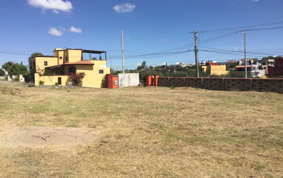 lote oasis