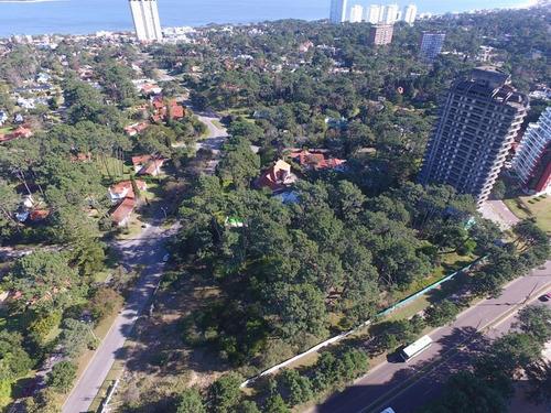 lote para desarrollo de proyecto inmobiliario de 22 pisos en avenida roosevelt punta del este