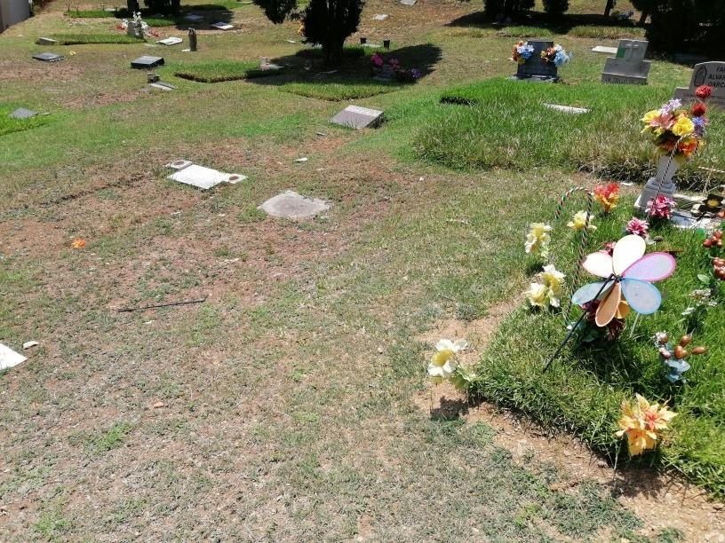 lote parque funeral guadalupe sector lomas
