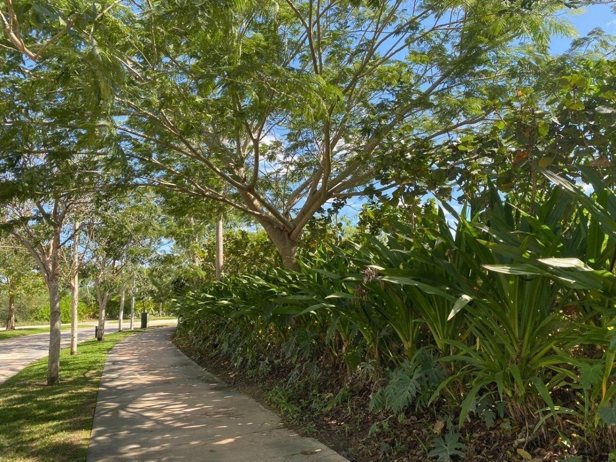 lote residencial en venta en cabo norte, mérida yucatán