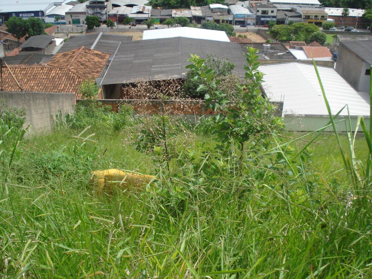 lote semio-plano iguaçu