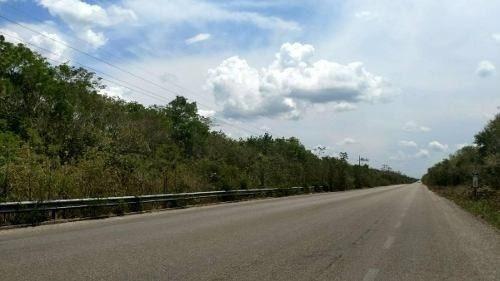 lote sobre carretera federal km8 (coba)
