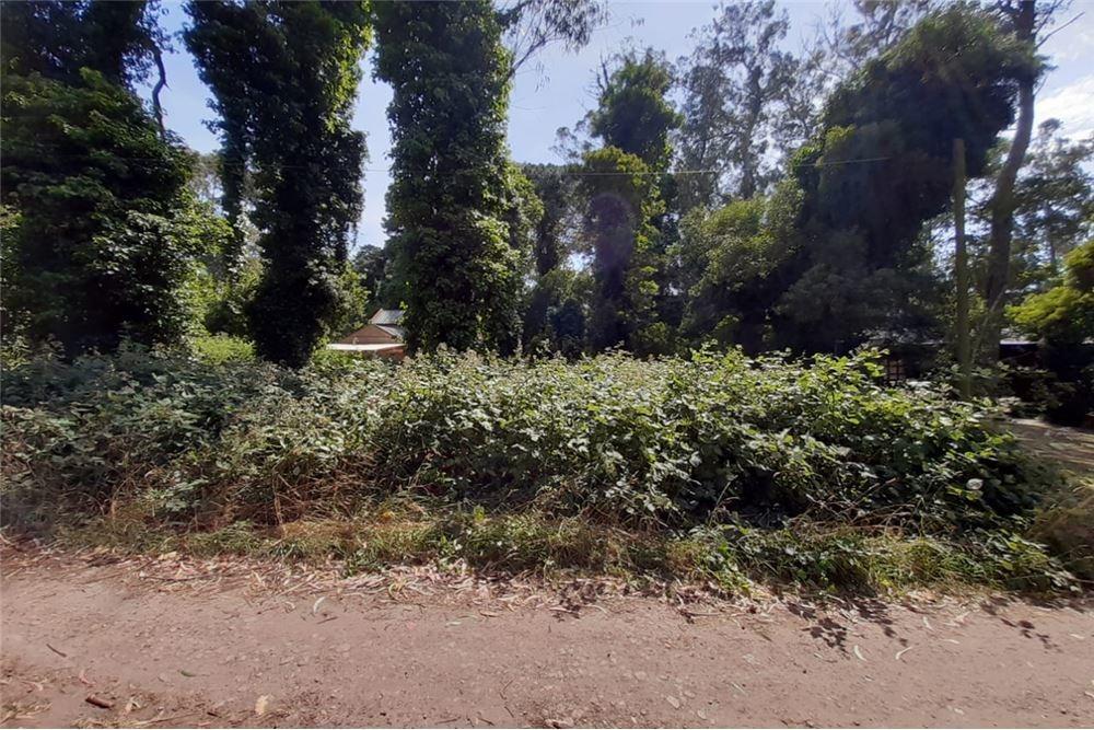 lote terreno bosue peralta ramos