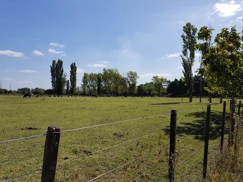 lote terreno en venta 4000 m2 zona rural - general rodriguez