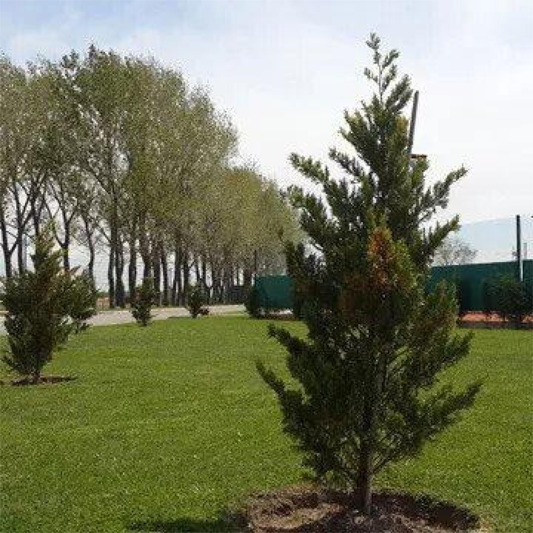 lote venta canning  barrio la alameda -etapa 2- a la laguna