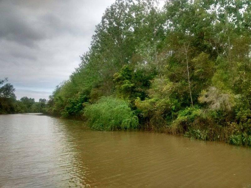 lote venta delta tigre - arroyo aguaje del durazno