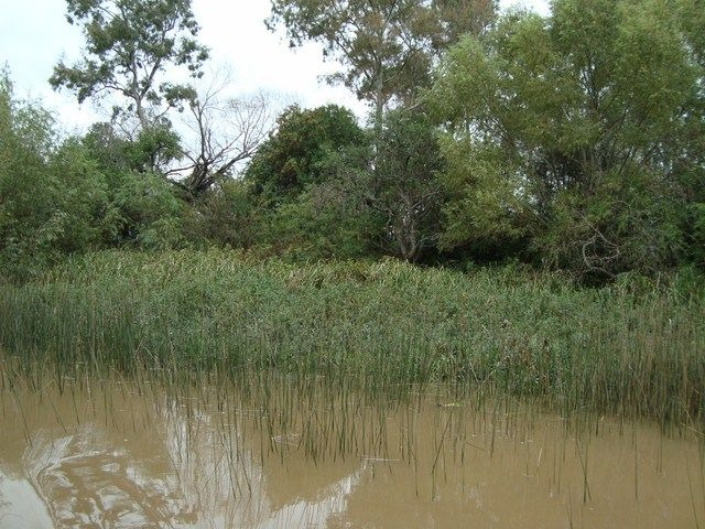lote venta delta tigre - arroyo desaguadero - lote desaguade