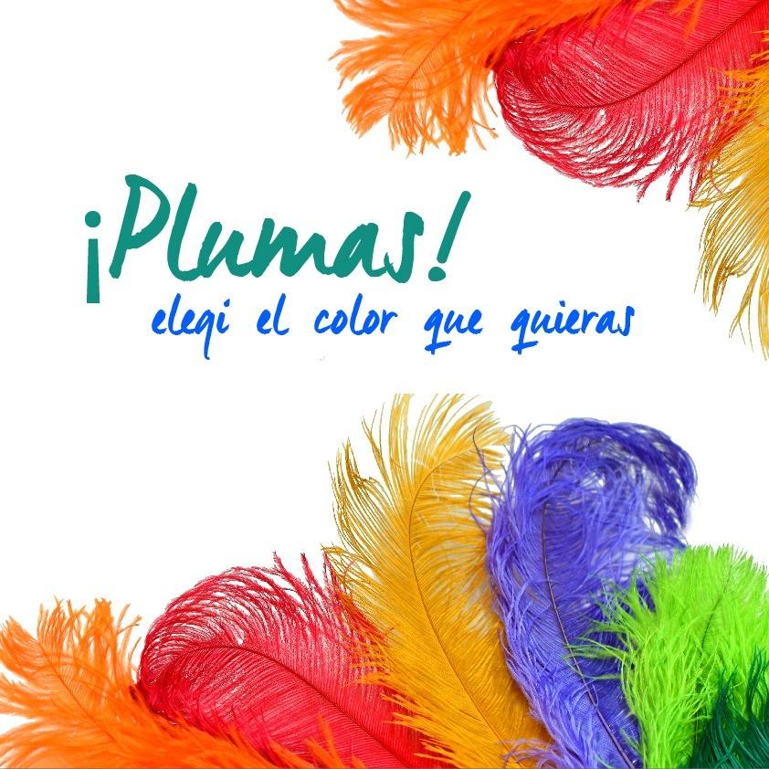Lote X 50 Plumas Carnaval Grande Colores Disfraz Bco Turq - $ 2.500 ...