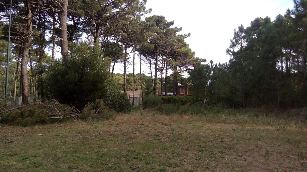 lote zona alamos ii- cul de sac de babor- pinamar