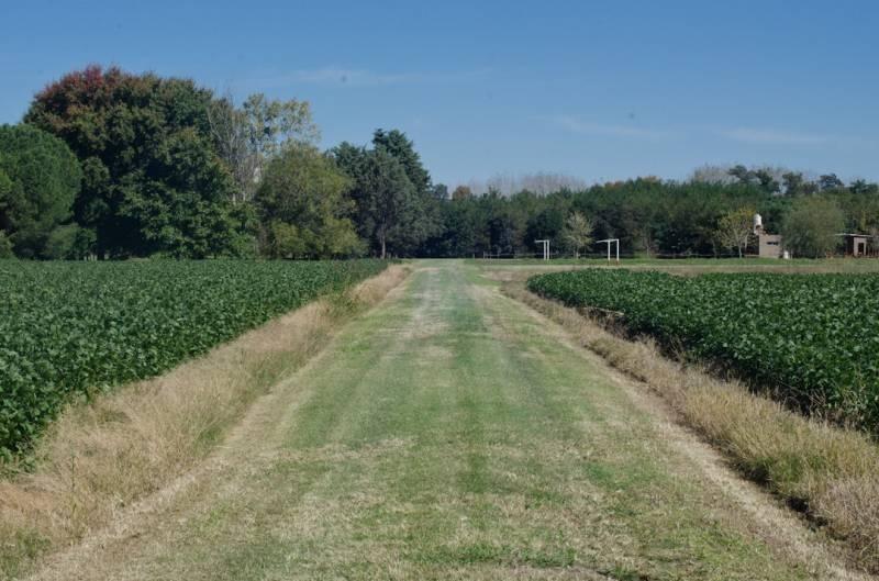 lote zona polo - 32 hectáreas gral. rodríguez