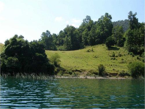 loteo bahía pullinque, lago pullinque, panguipulli,región de los ríos.