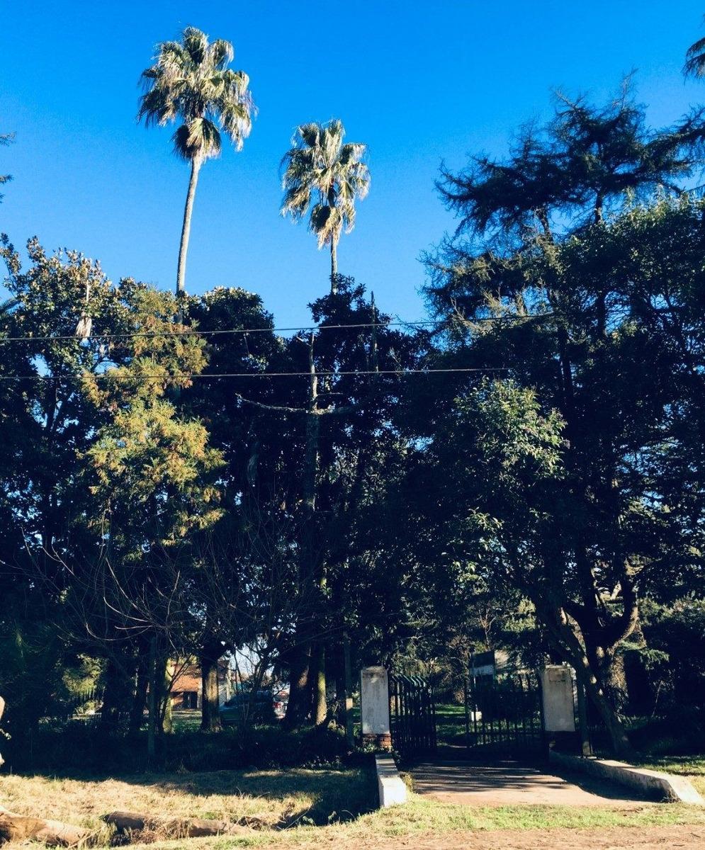 loteo las palmeras de álvarez