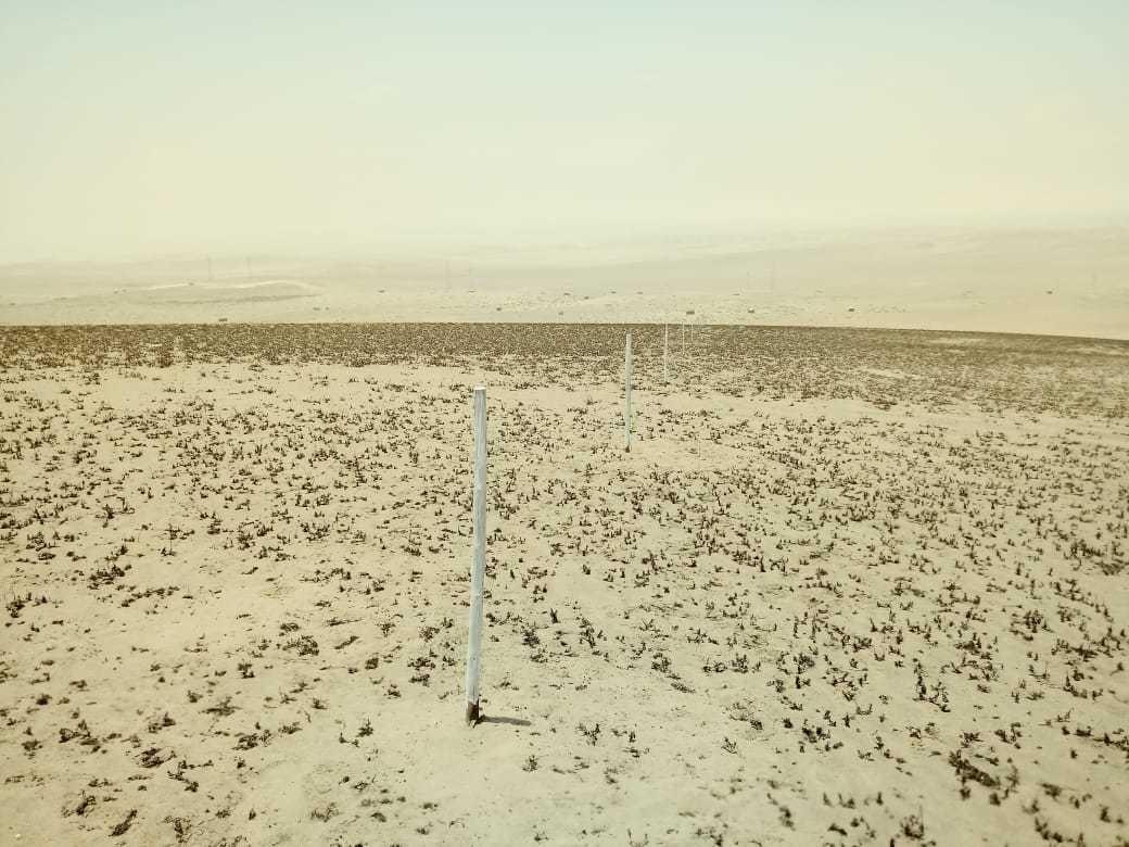lotes agrícolas desde mil m2