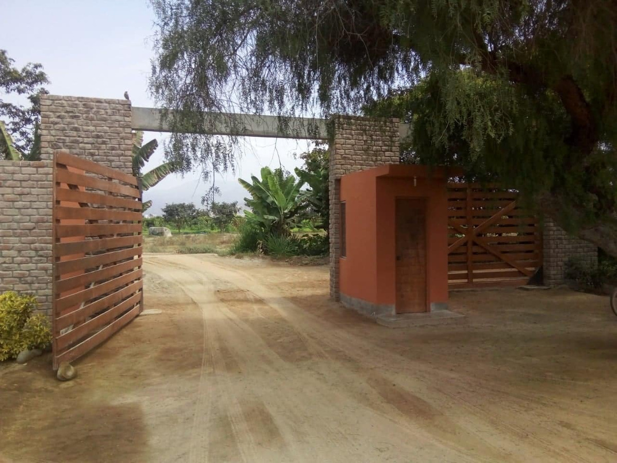 lotes  asia   - 320 mt. - us$19,500