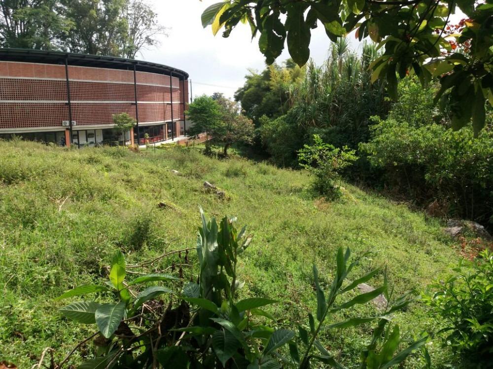 lotes barrio santa ana cerca al parque educativo y colegios