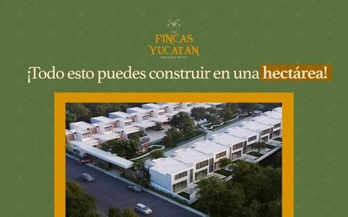 lotes de inversión desde 5,000 m2 a $ 28 m2 en seyé yucatán
