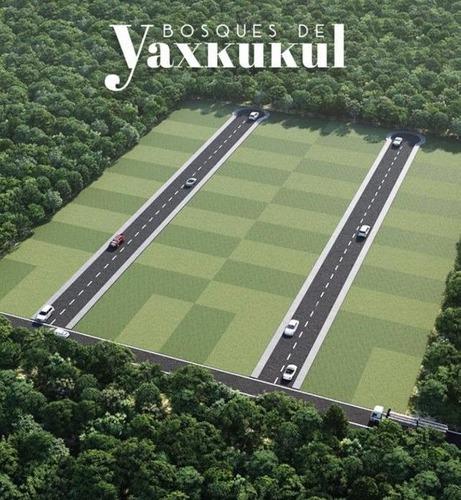 lotes de inversión en bosques de yaxkukul