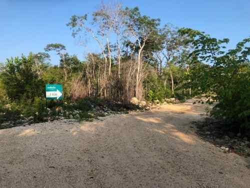 lotes de inversion en tulum con financiamiento