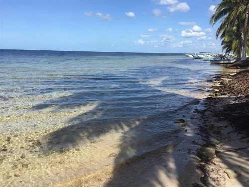 lotes de inversión naay en playa santa clara