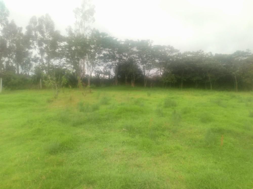 lotes de terreno