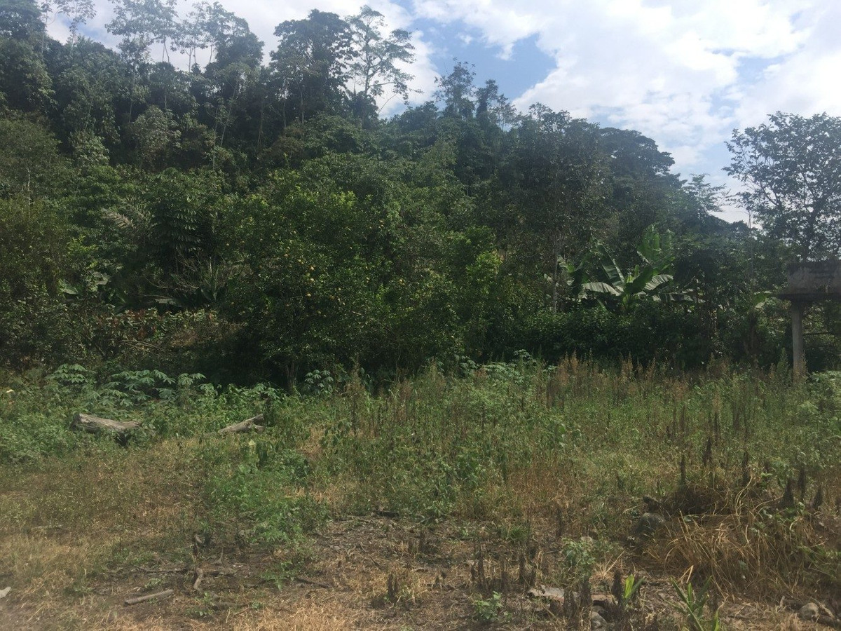 lotes de terrenos en cumanda - chimborazo
