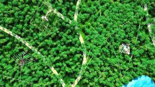 lotes en comunidad sustentable tulum p1970