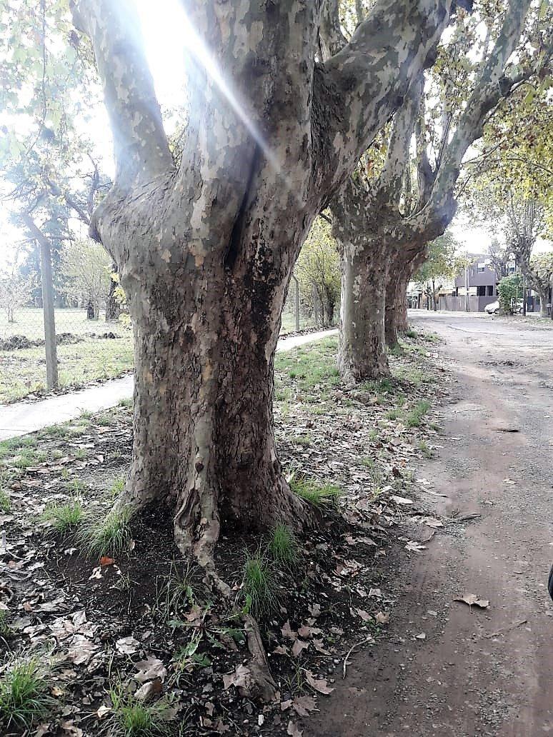 lotes en malvinas argentinas - barrio cerrado magna
