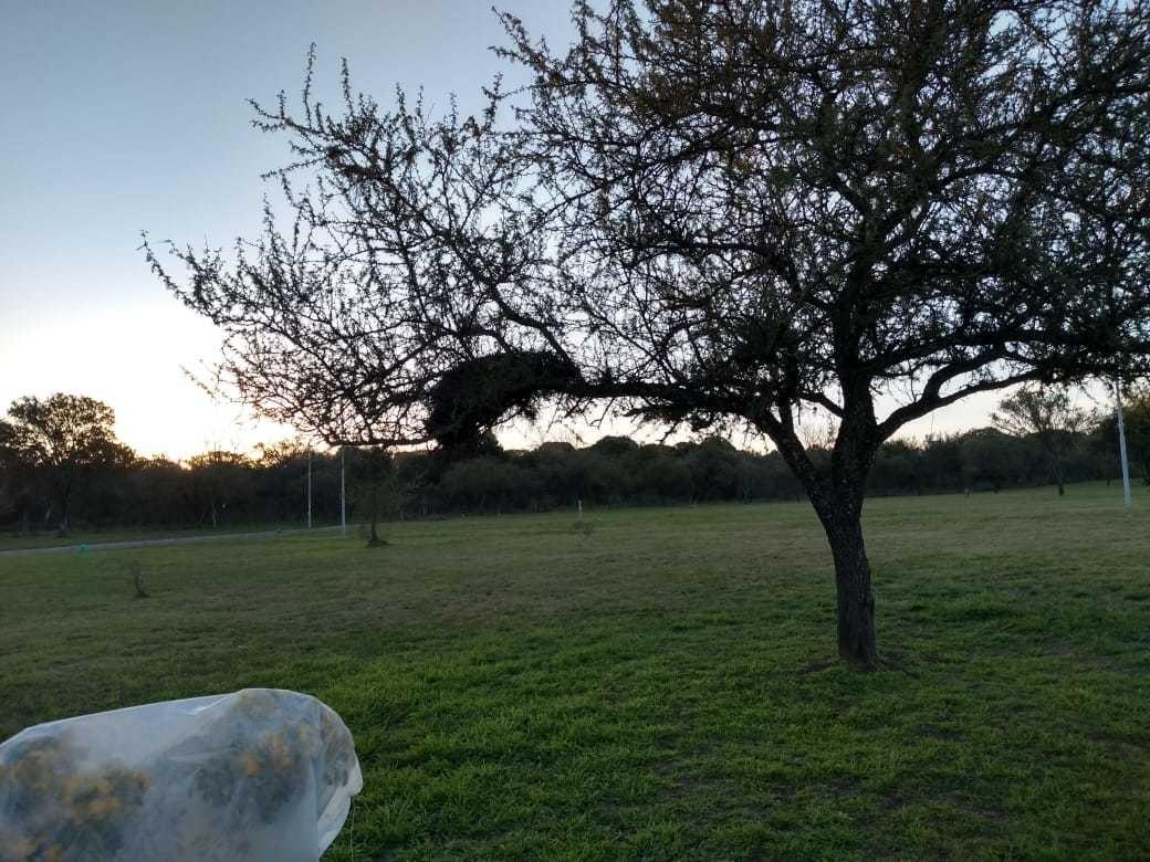 lotes en venta bº bela vista-rio ceballos c/ escritura