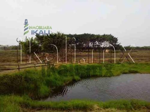 lotes en venta en tuxpan veracruz, 80,000 m² . ubicado en sabanillas terreno de 8 hectáreas con 300 metros de borde a la carretera tuxpan- tamihahua, a 6 km del centro de tuxpan ver. tiene un estanqu