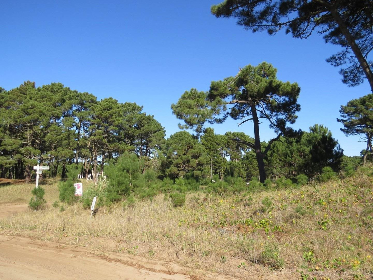 lotes en venta-zona alamos-sobre boulevard y barlovento-1000 m2-entorno natural