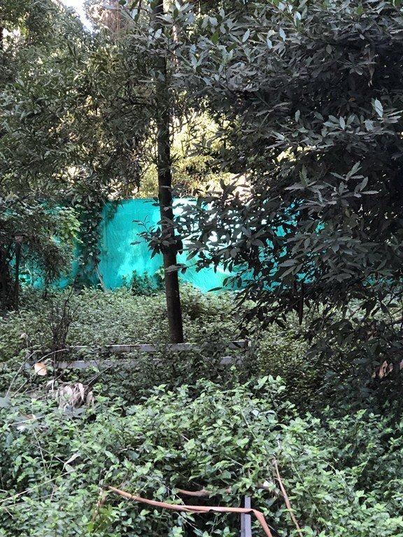 lotes increibles en bosque peralta ramos
