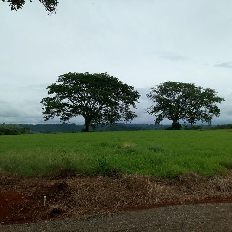 lotes para quintas, desde 5.000 m2, labrador, vistas, laguna