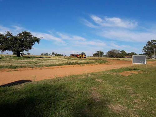 lotes para rancho em promissão