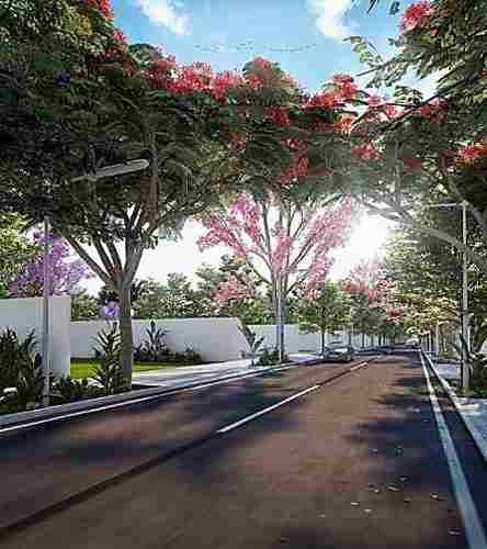 lotes residenciales de inversion en akbal komchen progreso