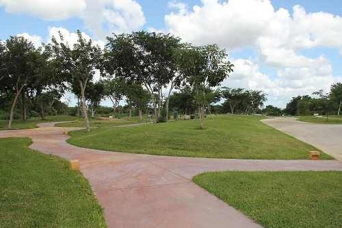 lotes residenciales en parque central