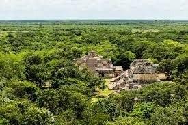 lotes residenciales en privada bosques de conkal
