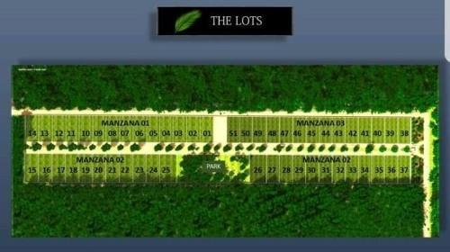 lotes residenciales en xpu-ha riviera maya p2523