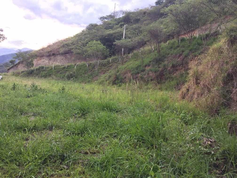 lotes terrenos malacatos
