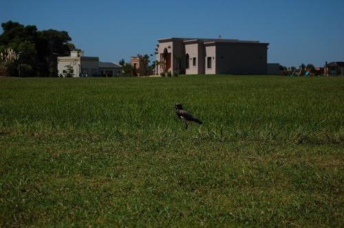 lotes y terrenos 1830 m2 arroyo dulce barrio cerrado lujan