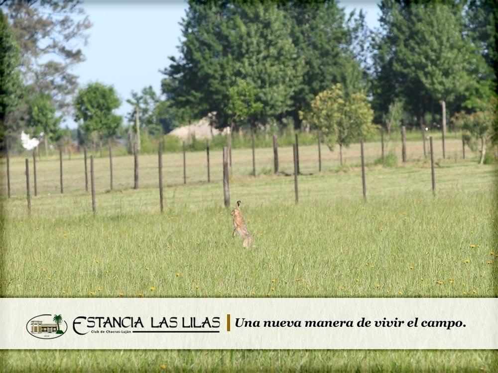 lotes y terrenos en estancia las lilas con árboles 2 has.