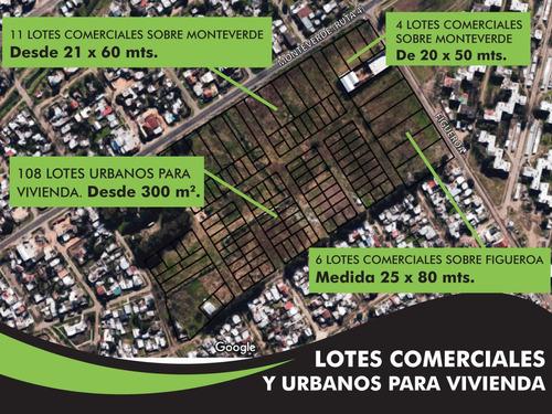 lotes zona sur para vivienda en monteverde figueroa