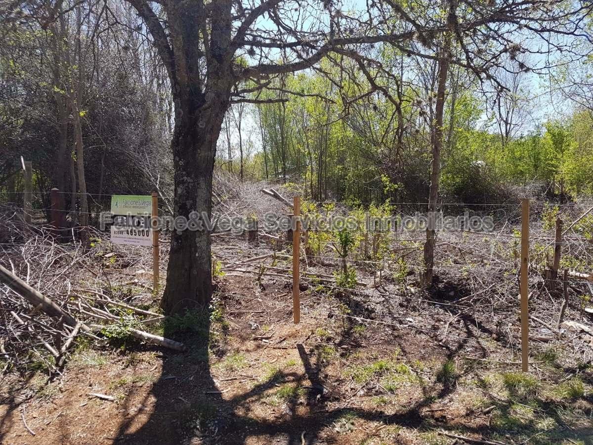 lote/terreno en 4 horizontes villa general belgrano ref #228