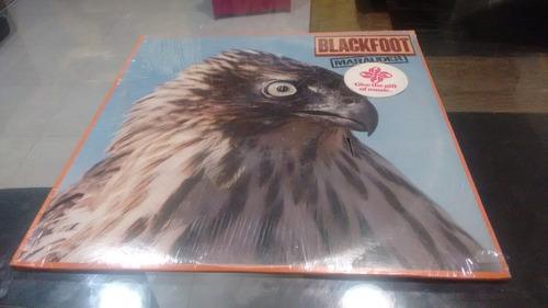 lp blackfoot marauder importado acetato,long play